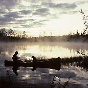 Canoeist and black lab fishing on small northern lake Early sunrise. Summer.  Northern Minnesota.