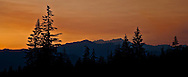 Douglas Fir trees and the Olympic Mountains (Mt Jupiter and Mt Constance) silhouetted against an orange sunset sky - viewed from the Kitsap Peninsula in Puget Sound, WA, USA.