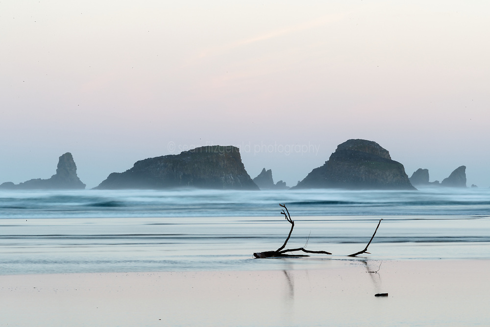 Beach, driftwood and sea stacks from Cannon Beach. Ecola State Park, Oregon, USA.
