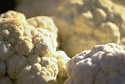 Close up selective focus photograph of a few heads of fresh cauliflower