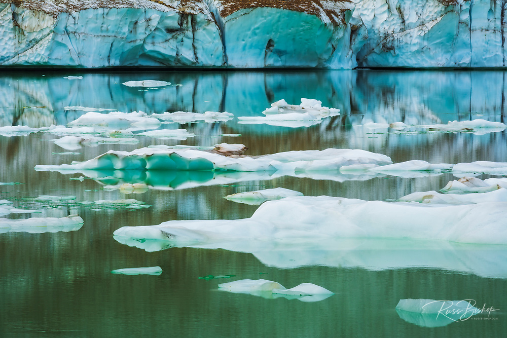 Icebergs on glacial meltwater under Mount Edith Cavell, Jasper National Park, Alberta Canada