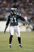 Philadelphia Eagles wide receiver Jason Avant (81) gets set to go out for a pass during the NFL NFC Wild Card football game against the New Orleans Saints on Saturday, Jan. 4, 2014 in Philadelphia. The Saints won the game 26-24. ©Paul Anthony Spinelli