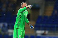 goalkeeper David Marshall of Cardiff city looks on.EFL Skybet championship match, Cardiff city v Blackburn Rovers at the Cardiff city stadium in Cardiff, South Wales on Wednesday 17th August 2016.<br /> pic by Andrew Orchard, Andrew Orchard sports photography.