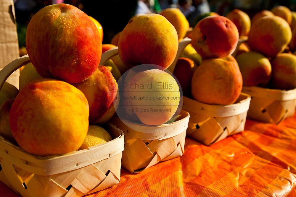 Fresh South Carolina peaches at an organic local produce farmers market in Marion Square in Charleston, South Carolina