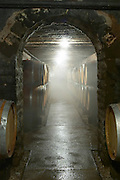 barrel cellar with mist from a humidifier domaine maillard chorey-les-beaune cote de beaune burgundy france