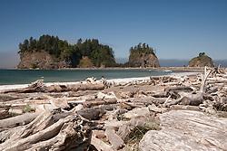 United States, Washington, La Push, driftwood and island