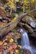 The rarely glimpsed upper falls of Dowdy Creek within the New River Gorge of West Virginia, drop over an approximate 40 foot cliff face and meanders several yards before plunging again and dropping to another cliff below before eventually meeting the New River.