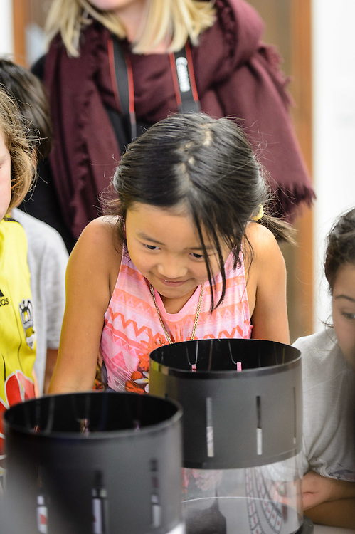CITY GALLERY, WELLINGTON, NEW ZEALAND - July 07: Kahurangi School visits July 07, 2016 in Wellington, New Zealand. (Photo by Mark Tantrum/ http://marktantrum.com)