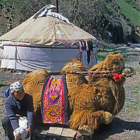 A nomadic Khirghiz woman poses beside her yurt and camel she rents for tourist photos beside a mountain road in the Bogda Shan Mountains near Urumqi in Xinjiang province, China.