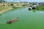 CHAOHU, CHINA - JUNE 16: (CHINA OUT)<br /> <br /> Blue-Green Algae Blooms In Chaohu Lake <br /> A general view of the blue-green algae blooming in the Chaohu Lake on June 16, 2013 in Chaohu, Anhui Province of China. Chaohu Lake is one of the five largest freshwater lakes in China, with an area of 800 square kilometers.<br /> ©Exclusivepix