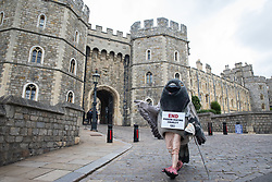 Windsor, UK. 1 July, 2020. A bandage giant pigeon on crutches holds a sign reading 'End Pigeon-Racing Cruelty' at a protest by PETA UK activists outside Windsor Castle. Animal rights charity PETA UK is calling on the Queen, currently isolating at Windsor Castle, to cut ties with pigeon racing following a PETA US investigation which revealed that all eight birds sent by the Queen to participate in the 2020 South African Million Dollar Pigeon Race (SAMDPR) died in quarantine and that fewer than a quarter of the birds entered for the race subsequently complete it.