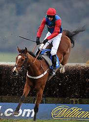 Race Winner Ballyegan ridden by Liam Heard jumps the last during the Bell Inn At Watchet Handicap Chase (Class 5) (5YO plus)  - Photo mandatory by-line: Harry Trump/JMP - Mobile: 07966 386802 - 09/03/15 - SPORT - Equestrian - Horse Racing - Taunton Racing - Taunton Racecourse, Somerset, England.