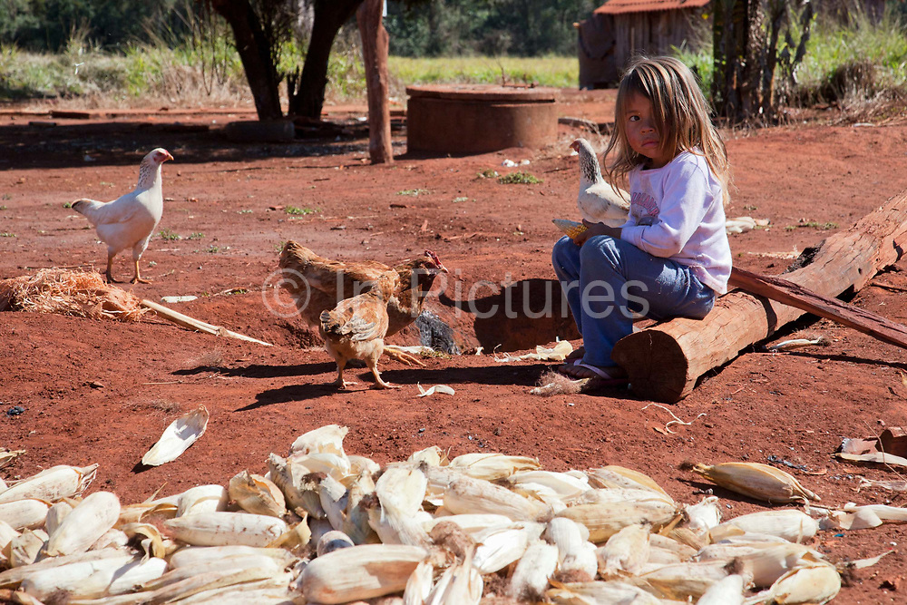 Young Guarani girl sitting next to a pile of corn maize. The Guarani are one of the most populous indigenous populations in Brazil, but with the least amount of land. They mostly live in the State of Mato Grosso do Sul and Mato Grosso. Their tradtional way of life and ancestral land is increasingly at risk from large scale agribusiness and agriculture. There have been recorded cases and allegations of violence between owners of large farms and the Guarani communities in this region.