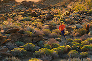 Krissy Moehl, Luke Nelson, Jeff Browning, dawn trail run, Patagonia Trail offsite, W17, southern california, Anza Borrego, Houdini, Airshed, tights, pack, storm racer, base layer