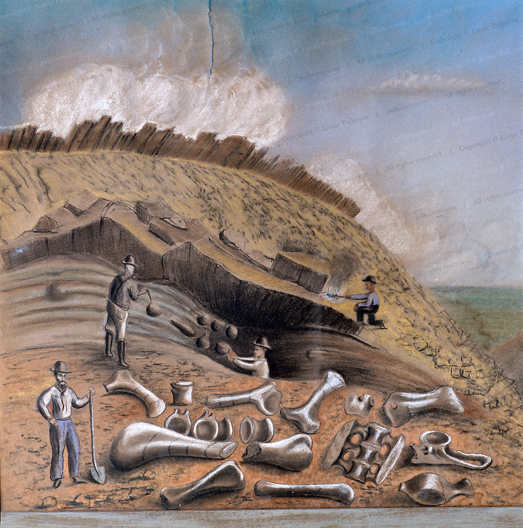 Arthur Lakes school teacher and amateur fossil hunter who touched off the great bone wars by sending fossils he collected near Morrison, Colorado to O.C. Marsh made this drawing at Como Bluff, Wyoming.