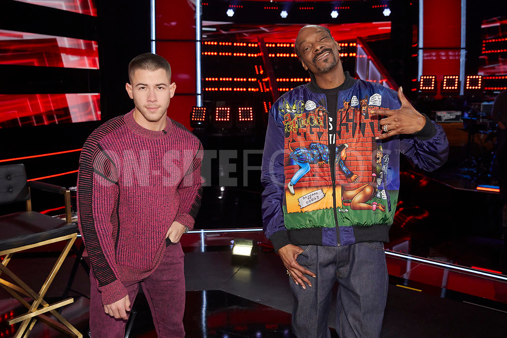 """THE VOICE -- """"Knockout Reality"""" Episode 2010 --  Pictured: (l-r) Nick Jonas, Snoop Dogg -- (Photo by: Trae Patton/NBC)"""