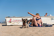 A woman sunbathes with her pet dog at Peschanka Beach in Mariupol, Ukraine. The city is located on the Sea of Azov. (September 26, 2015)