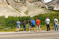 People lining the side of the road in the Many Glacier region of Glacier National Park only a few feeet away from a bear foraging in the woods.<br /> <br /> ©2016, Sean Phillips<br /> http://www.RiverwoodPhotography.com