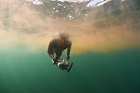 Diver in dense cloud of Plankton in Basking Shark feeding area; in the area of the Island of Mull; Scotland; June 2009<br /> Model release form nº 1<br /> Mission: Basking Sharks<br /> Location: Scotland, off the Island of Mull (Coll and Tiree Islands area) - June 2009