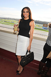 Athlete LOUISE HAZEL at the 2012 Hennessy Gold Cup at Newbury Racecourse, Berkshire on 1st December 2012