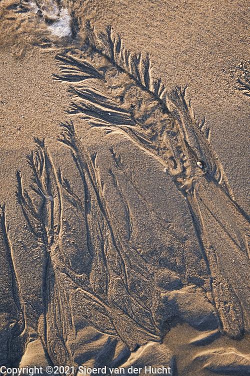 Natuurlijke zandsculpturen op het strand. | Natural sand sculptures on the beach.