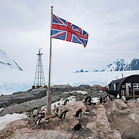 A British flag flies at Port Lockroy, Antarctica, where the former British Base A is now used as a museum, gift shop, research station, and nesting ground for gentoo penguins.