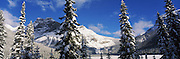 Snow covered trees with mountain range in the background, Emerald Lake, Yoho National Park, Canada