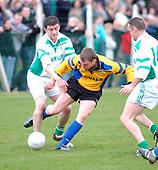2006 Gaelic football