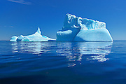 Icebergs floating in the Atlantic Ocean<br /> Near St. Anthony<br /> Newfoundland & Labrador<br /> Canada