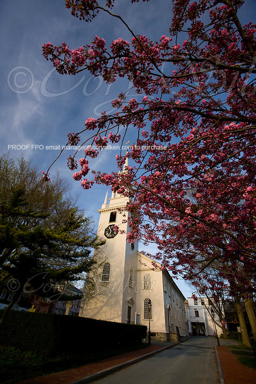 Trinity Church and courtyard, cherry blossoms.