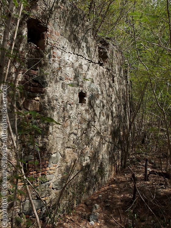 Leinster Bay Plantation Ruins, St John, USVI