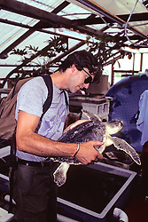 Peter Tyson Looking At Ridley Turtle