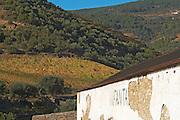 quinta do infantado douro portugal