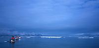 Padlere på rekke og rad i havkajakk, sea kayaks on a row, drivis, sea ice