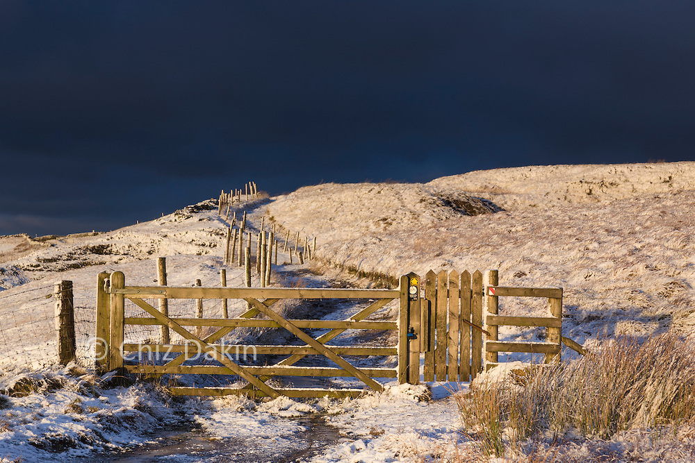 The gate where the rough off-piste rejoins the main Errwood track.