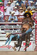 Rookie Saddle Bronc rider J.W. Meiers is thrown from James Bond at the Cheyenne Frontier Days rodeo at Frontier Park Arena July 24, 2015 in Cheyenne, Wyoming. Frontier Days celebrates the cowboy traditions of the west with a rodeo, parade and fair.