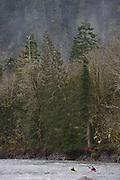 Kayaking Elwah River - Northern Border Olympic National Park - Washington State - USA