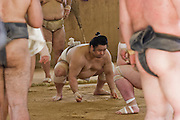 Wrestlers of the Professional Sumo Team (Musahigawa Beya) practicing in Nagoya, Japan before a tournament.