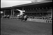 19/09/1962<br /> 09/19/1962<br /> 19 September 1962<br /> Irish St. Leger at the Curragh Race Course, Co. Kildare.