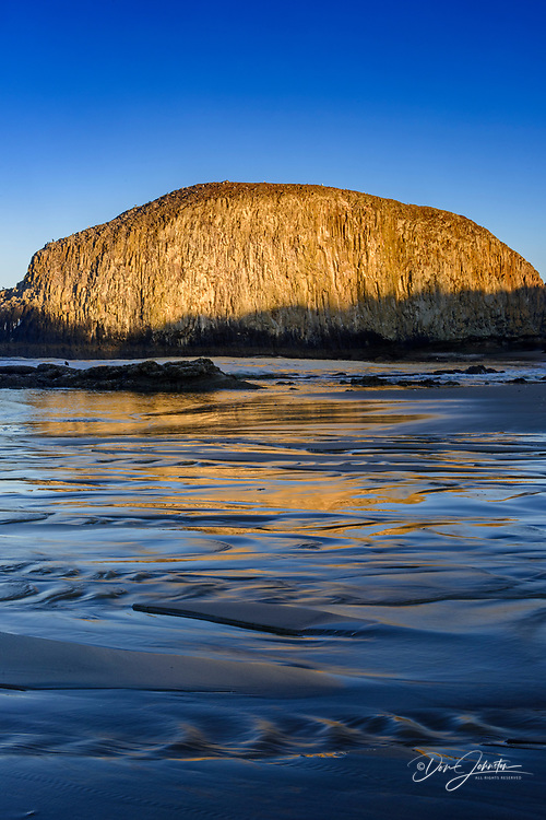 Seal Rock reflected in wet sand, Seal Rock State Recreation Site, Seal Rock, Oregon, USA