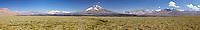YARETAS (Azorellas compacta) Y MONYANAS, RESERVA NATURAL LAGUNA DEL DIAMANTE, PROVINCIA DE MENDOZA, ARGENTINA