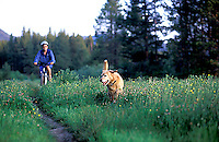Sarah Meredith mountain biking on trail with Jay in the Upper Truckee River meadows in South Lake Tahoe, CA.<br />