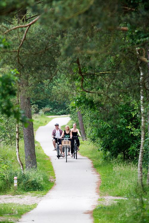 In Soest rijdt een groep jongeren op de fiets door de bossen.<br /> <br /> In Soest a group youngsters is cycling in the forest.