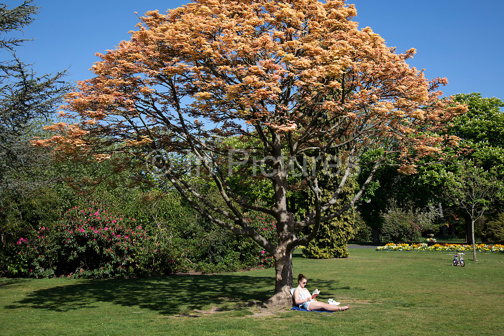 Woman reading her book in Canon Hill Park as Coronavirus is felt on a local level on 25th April 2020 in Birmingham, England, United Kingdom. People here, in what is normally an incredibly busy urban park are mainly abiding the stay at home message, and those out exercising are doing so with care. Coronavirus or Covid-19 is a new respiratory illness that has not previously been seen in humans. While much or Europe has been placed into lockdown, the UK government has extended stringent rules as part of their long term strategy, and in particular social distancing.