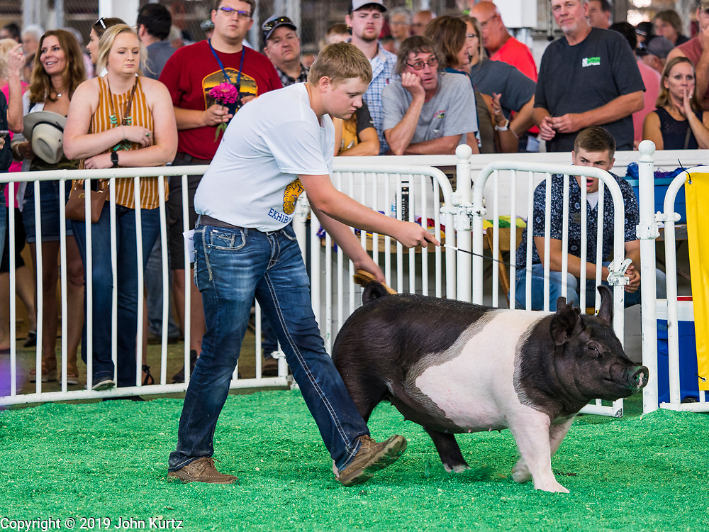 08 AUGUST 2019 - DES MOINES, IOWA: Cody Birt, from Corning, Iowa, shows one of his hogs at the Iowa State Fair. The Iowa State Fair is one of the largest state fairs in the U.S. More than one million people usually visit the fair during its ten day run. The 2019 fair run from August 8 to 18.       PHOTO BY JACK KURTZ