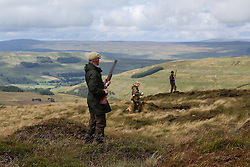 © Licensed to London News Pictures. 13/08/2016. Swinithwaite, UK. Men and women cross the moor during a grouse shoot high on the Yorkshire moors in Swinithwaite, North Yorkshire. Yesterday was the glorious 12, the day that traditionally marks the start of the grouse shooting season. Photo credit : Ian Hinchliffe/LNP