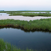 In Massachusetts, the North Shore's Great Marsh is the largest continuous stretch of Salt Marsh in New England, extending from Cape Ann to New Hampshire. The unique complex of natural systems add ecological, economic, recreational, and cultural value to daily lives both on the coast and inland where land is connected by river and stream networks.