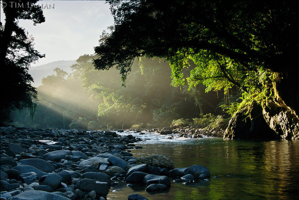 Rays of sunlight shining on a stone-filled creek in a woodland settiing in Northern Sierra Made Natural Park.