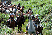 The horses are brought down in the valley to be closed in the arena. The Rapa Das Bestas is the event where beast and man fight each again the other. Basically 100/200 horses are captured on the montain surronding Sabucedo and then they are kept in a stone made arena. In the arena the horses are blocked by 2/3 men and the tail and the mane are cut with apposite scissors.