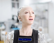 The first complex AI system realized on theSingularityNETis an AI brain forSophia Hanson— the most sophisticated humanoid robot ever built.<br />This Year Saudi Arabia granted the status of Citizen to Sophia, that became the first robot to be recognized as a citizen.The new version of Sophia's mind, currently under development bySingularityNETin conjunction with Hong Kong firm Hanson Robotics, will be a core node of theblockchain. Her intelligence will be plugged in the network for everyone's benefit and will also receive input and wisdom from everyone's algorithms. Sophia's mind will be constantly fed with new content fromSingularityNET, while at the same time helping to power the network with its human-like intelligence.